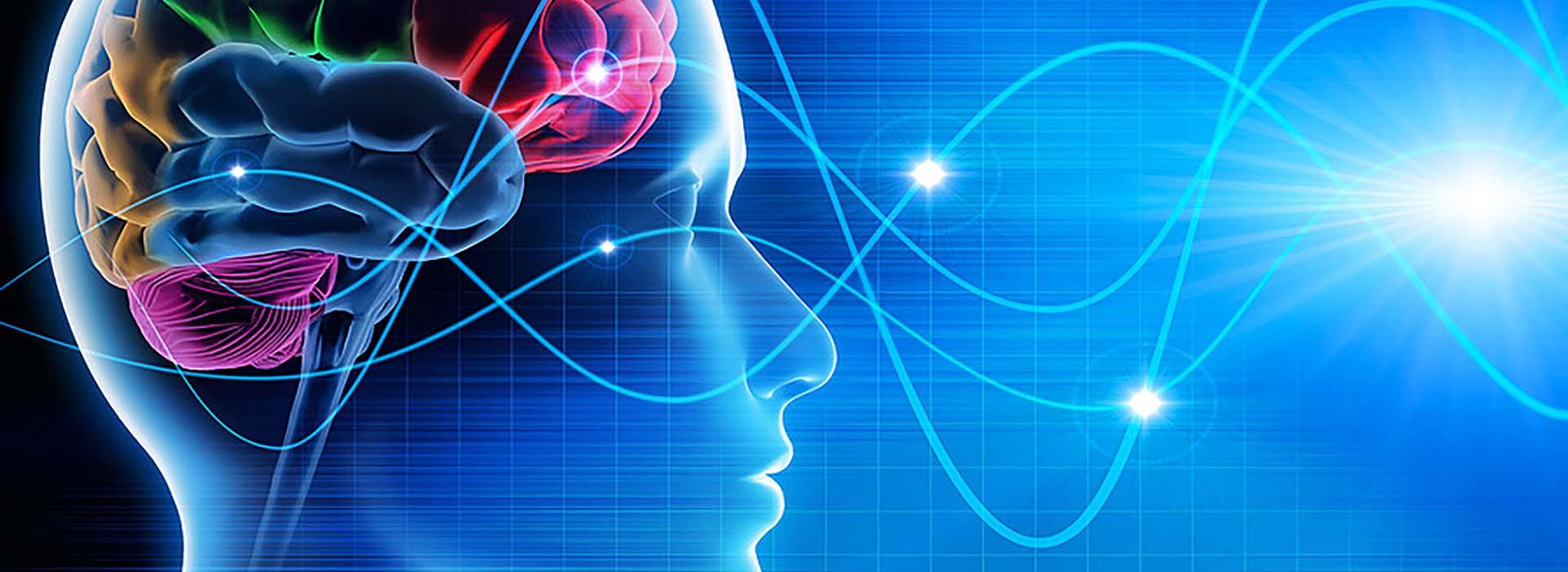 therapeuten-head-hormone-in-balance